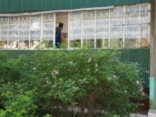 Продажа комнаты: 3-комнатная квартира, Московская область, Истринский р-н, п. Агрогородок, 7, фото 1