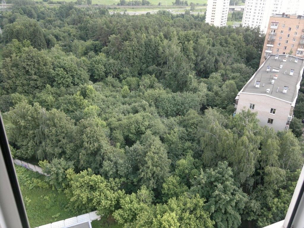 Квартира в новостройке ЖК «Миллион алых роз», Москва, Пролетарский пр-кт - 1